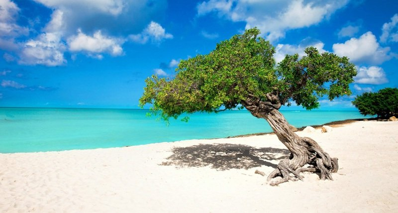 Best Beach Vacations, Aruba Eagle Beach