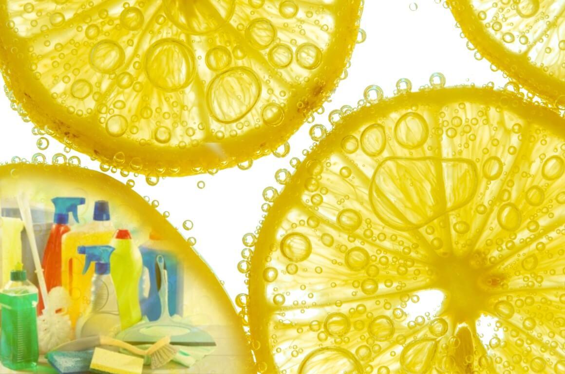 Antibacterial Fruit Acids